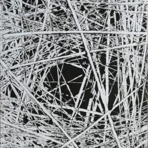 D.Herbst -Das Nest